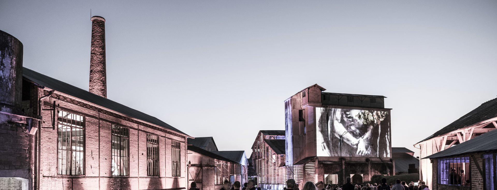 Festival Arts in Situ 3 jours de spectacles ciné-concert, concerts et expositions